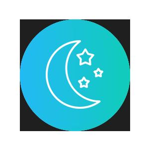 Reizlos Logo